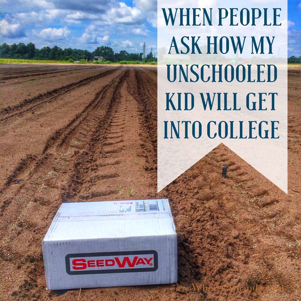 when people ask how my unschooled kid will get into college homeschool farm pumpkin project wheresamanda com