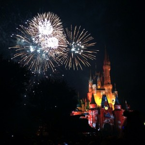 2014 Holiday Wishes Mickey's Very Merry Christmas Party