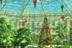 Christmas at Gaylord Palms Resort Orlando