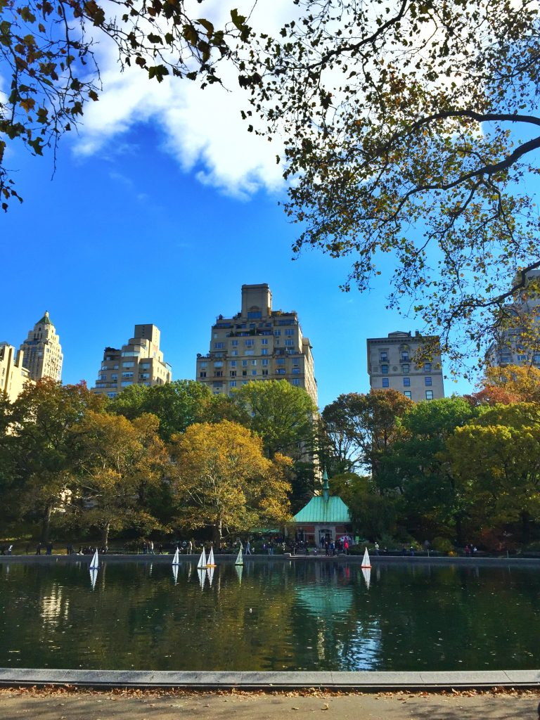 New York City's Central Park in the Fall