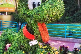 Disney's Epcot International Flower and Garden Festival Pluto Topiary