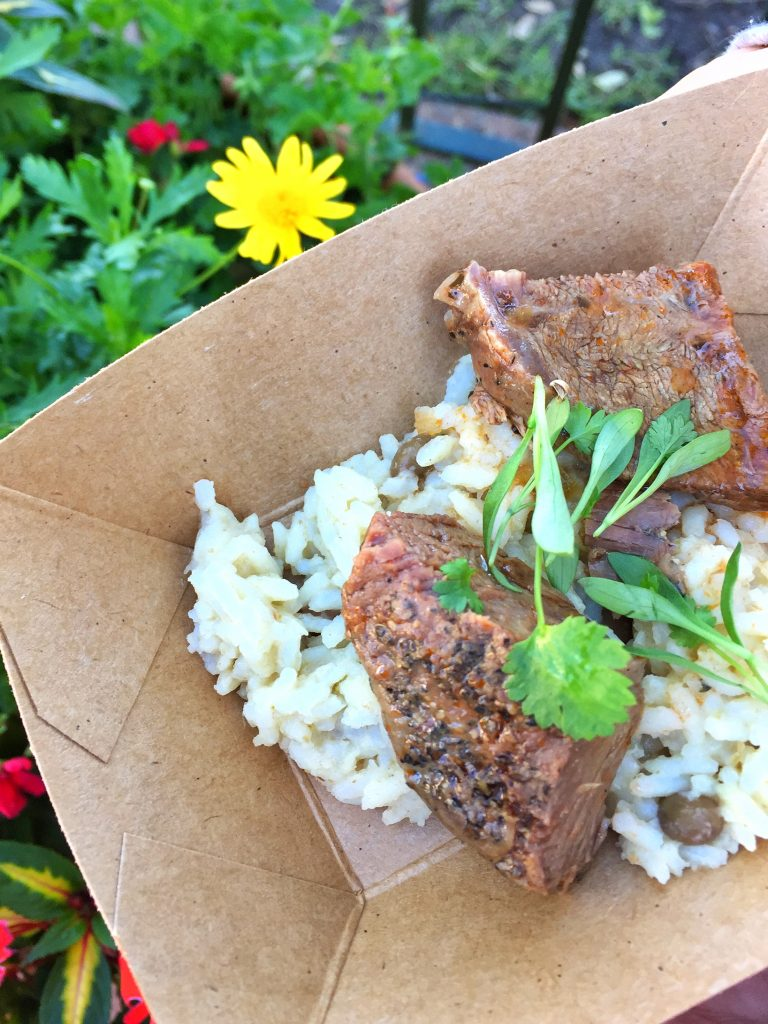Disney's Epcot International Flower and Garden Festival Braised Beef