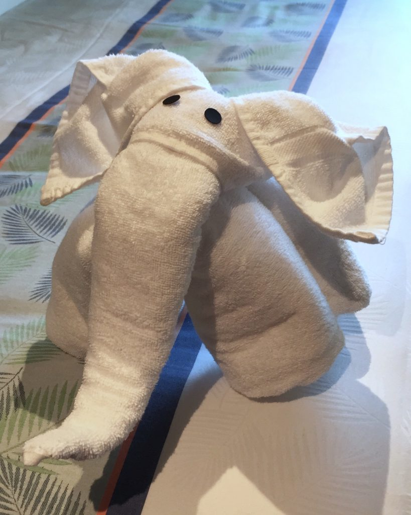 Carnival Horizon Cruise towel animal